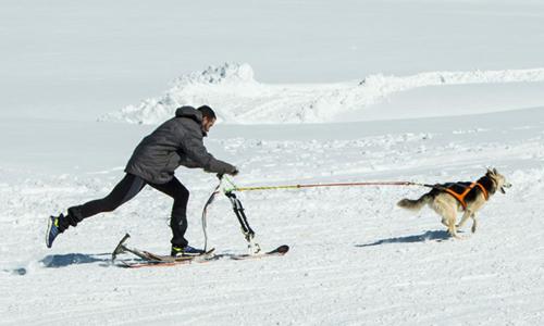 Hombre en modalidad de Canicross en la nieve