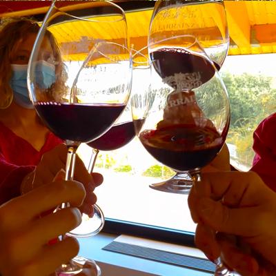 Copa de vino Pago de Larrainzar