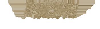 Logo Pago Larrainzar